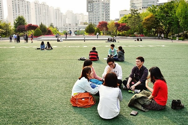 Visa D4-1 là visa đang được nhiều bạn trẻ lựa chọn
