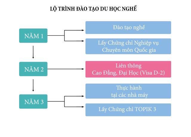 Quá trình du học nghề tại Hàn Quốc với visa D4-6