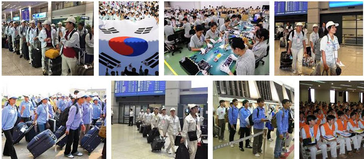 Người lao động nên nắm bắt những thông tin về XKLĐ Hàn Quốc