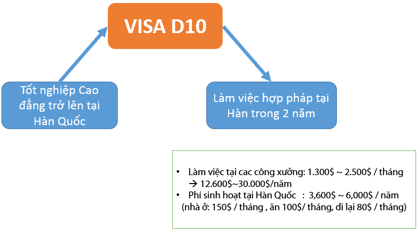 Visa D10 là gì?