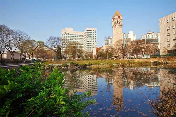 Trường đại học Sejong - Trường Top nổi tiếng đào tạo ngành kinh tế tại Hàn Quốc
