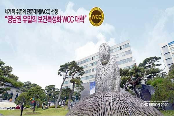 Cao đẳng Y Daegu