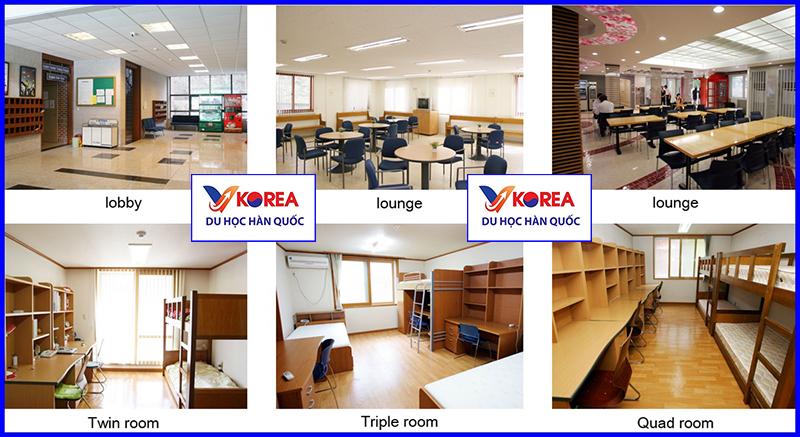 Ký túc xá trường đại học ngoại ngữ Hàn Quốc